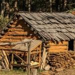 Jedziesz na wieś na wakacje lub chwilowy wypoczynek? Zrób tam też zakupy!